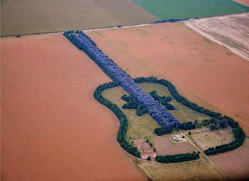 Pedro_ureta_argentina_forest-guitar.jpg